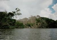 03_1993_Reise1_ Gran Sabana_Venezuela_ (41)