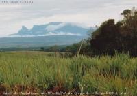 03_1993_Reise1_ Gran Sabana_Venezuela_ (42)