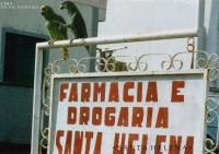 03_1993_Reise1_ Gran Sabana_Venezuela_ (50)