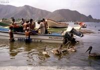 07_2002-2003-Venezuela_ (7)