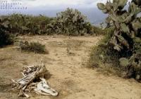 _04_VE_ 2004_pueblos del sur_ (3)