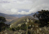 _04_VE_ 2004_pueblos del sur_ (8)