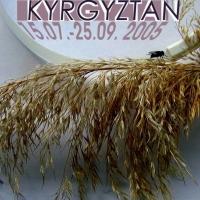 _01_2005_KYR_ (1)web