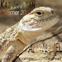_1_2006_K A Z _Altyn Emel_ (1)