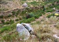 2006_Schneeleopard_1_KYR_ BARS_ (6)