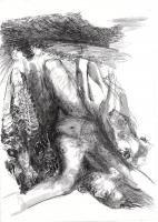 Träume der Wölfin (148)